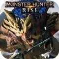 怪物猎人rise2.0金手指