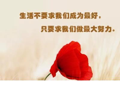 爱情里让人心酸的句子