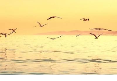 爱就是两人相依时的关怀,以及山水相隔时的等待