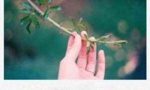 公司周年庆祝福语简短 十周年庆典贺词有创意